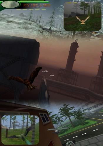 imigea ltd - Fly Like a Bird 3