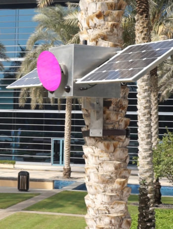 FILE FESTIVAL 2015 Assocreation - Solar Pink Pong (3)