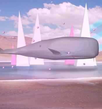 Marcio Shimabukuro (Shima) – Baleia