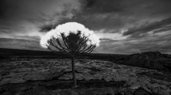 Kurtis Hough – Stumble