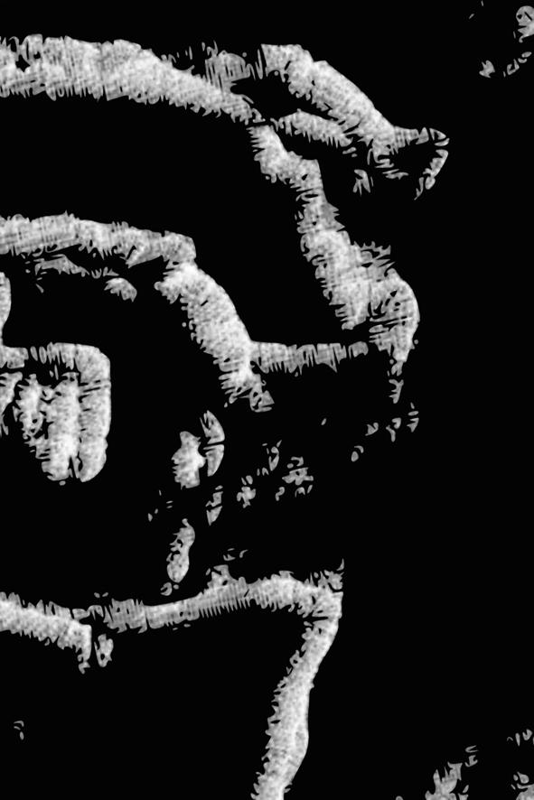 Daniel Wechsler - Dust